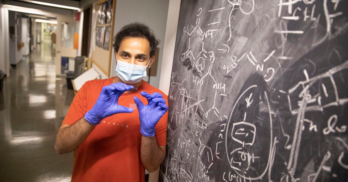 Harvard researchers use dyes to store data – Harvard Gazette
